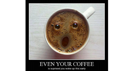 Even your coffee is shocked